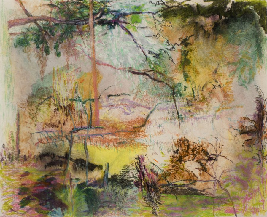 Deja Vue 2016 houtskool, pastel, gouache, papier 40 x 50 cm